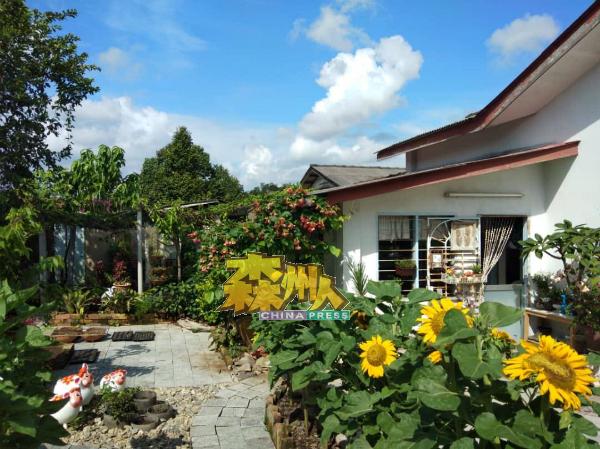 旅行社业者相中万茂新村,建议在新村开发民宿,吸引游客到访新村。