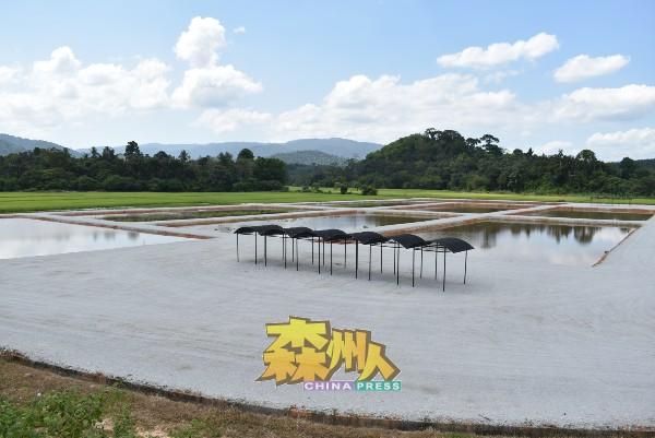 这里设有8个池塘,总面积为5.6英亩,耗资45万令吉打造,可容纳3000名游客。