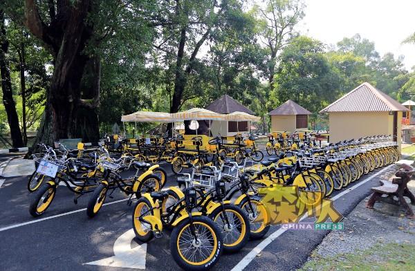 芙蓉脚车公园提供8款脚车供消费者选择。