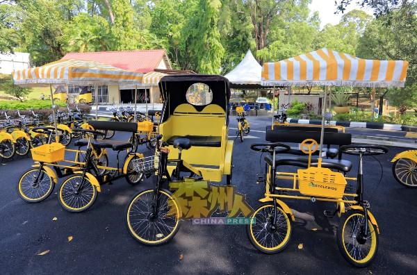 家庭式有棚脚车在众多脚车款式中最受消费者欢迎的车款。