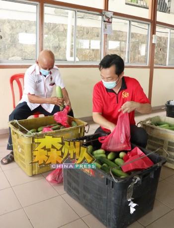 谢琪清(右)和刘天财分工合作,把热心党员报效的黄瓜装入袋子,再沿户派发给亚沙新村的村民。