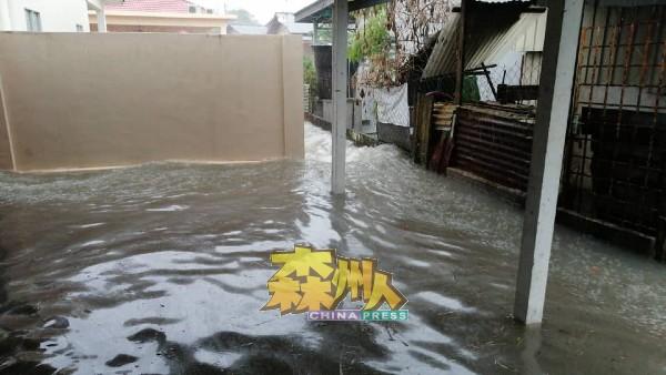 """别误会,这不是游泳池,这是小甘密新村一场大雨后,靠近排水沟的新村住家全成""""游泳""""屋。"""