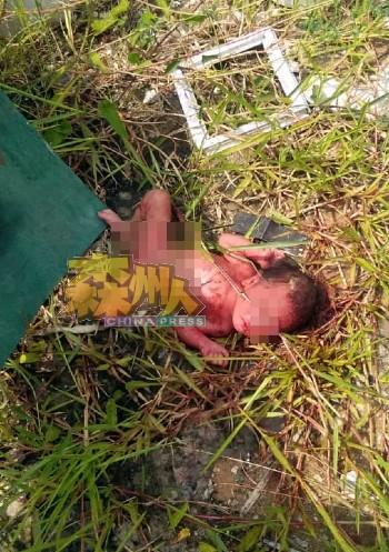 女婴被丢弃在草丛堆,身上还沾着血水,肚脐带还未脱落。