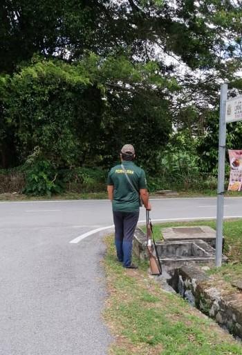 野生动物保护局官员拿著猎枪,在树林旁等候开枪击毙咬伤幼童的猴子。(照片取自网络)